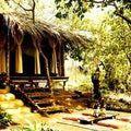 10 Eco-Friendly Hotels in India: Kaama Kethna Ecological Village, Agonda, Goa