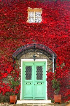 Red leaves and mint green door, Zagora, Pelion, Greece Cool Doors, The Doors, Unique Doors, Windows And Doors, Front Doors, When One Door Closes, Grand Entrance, Main Entrance, House Entrance