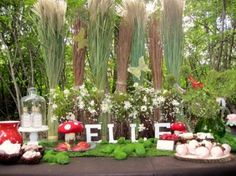This Woodland Fairy birthday party was created by Kate Landers Events, LLC. It takes place in a wooded back yard which trandsends you to a magical fairy land! The snacks buffet is a wonderful focal point with it's lush greenery, butterflies, toadstools, and fantastic parfait bar with toppings