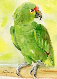 """Coco"" Amazon parrot watercolour 5x7 by Ron Wilson BA(SA)"