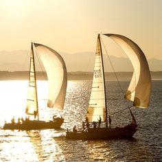Sailing Bliss