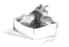 Featured Artwork: In the Box