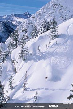 Ski - Alta & Snowbird Utah