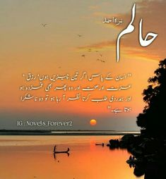 Islamic Inspirational Quotes, Islamic Quotes, Cute Wallpaper Backgrounds, Cute Wallpapers, Urdu Quotes, Qoutes, Romantic Novels To Read, Quotes From Novels, Urdu Words