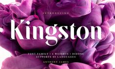 Kingston Pro is a contemporary Serif Didone typeface comprising of 6 weights… Gratis Fonts, Stencil Font, Design Typography, Lettering, Typography Inspiration, Design Inspiration, Serif Typeface, Behance, Photoshop