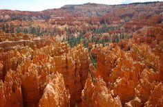 Exurban (43)    Bryce Canyon NP