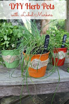 A Quick and Easy Dollar Store DIY Herb Pot project for spring. It only takes $4.00 to make these 3 cute custom herb pots with chalk board label markers.