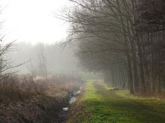 Picture that I took from my home town. Vlaardingen, The Netherlands.