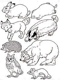 """Put the animals in the Mitten.free printable by Jan Brett to go with her book, """"The Mitten"""". Have the students color the animals and then use them for the mitten craft! Winter Activities, The Mitten Book Activities, Winter Art, Winter Theme, Preschool Books, Preschool Winter, Arctic Animals, Author Studies, Worksheets"""