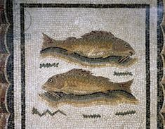 Couple of fish, detail of mosaic with medallions containing Xenia motifs uncovered in Thysdrus (El Djem), Tunisia, (end of 2nd cent.)