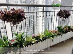 Small Balcony Design, Small Balcony Garden, Small Pool Design, Small Balcony Decor, Vertical Garden Diy, Balcony Plants, Balcony Ideas, Indoor Plants, Balcony Swing