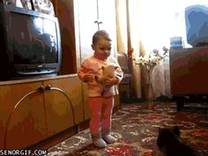 OBVIOUS WINNER: Give me my goddamn daughter back. | Five Funniest Cat GIFs Of The Week