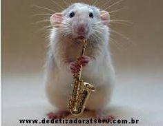 Blog do rato - Associação Brasileira de Franchising: Dica TSERV: Tem antídoto para o veneno de rato?
