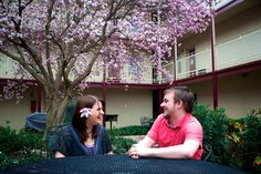 7 Canterbury Apartments Tuscaloosa Alabama Ideas Tuscaloosa Crimson Tide Fans The University Of Alabama