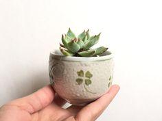 Green Clover Print Succulent Planter  Cute Ceramic by HoneyOlive