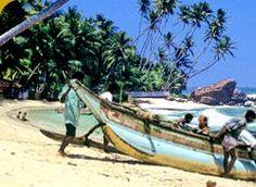 Tourist Hotels In Sri Lanka | Sri Lanka Travel Package, Sri Lanka Tours, Sri Lanka Vacations