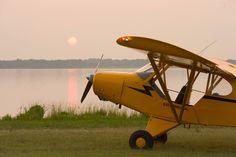 Piper Cub J3.