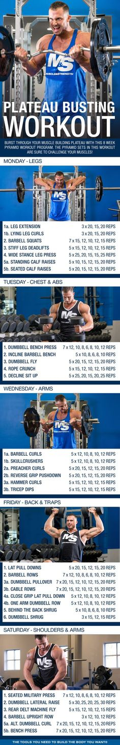 Burst through your muscle building plateau with this 8 week pyramid workout program. The pyramid sets in this workout are sure to challenge your muscles! Muscle Fitness, Fitness Tips, Gym Fitness, Fitness Plan, Fitness Equipment, Fitness Quotes, Fitness Nutrition, Work Out Routines Gym, Gym Routine