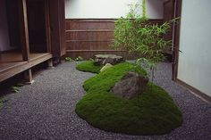 "Lush mossy ""islands"" float in a gravel "" sea"" in this shady courtyard garden."