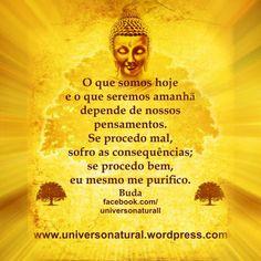 O que somos hoje e o que seremos amanhã depende de nossos pensamentos. Se procedo mal, sofro as consequências; se procedo bem, eu mesmo me purifico. Buda.