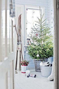 Keltasen perheen vuonna 1917 rakennettu hirsitalo Helsingissä huokuu iän tuomaa arvokkuutta jalämmintä tunnelmaa. Katso kuvat talon joulusisustuksesta ja toteuta itse!