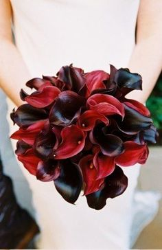 Red and Black Calla Lily Bouquet