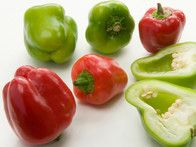 Mini Bell peppers are decorative and perfect for growing in a patio container. This compact plant produces an early crop of boxy sweet peppers that ripen from orange, through red, to chocolate brown.
