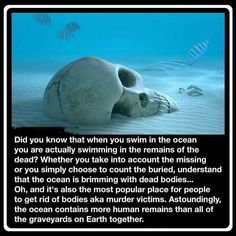 Did you know when you swim in the ocean you are actually swimming in the remains of the dead. Whether you take into account the missing or you simply choose to count the buried, understand that the ocean is brimming with dead bodies. Fun Facts Scary, Wierd Facts, Wow Facts, Intresting Facts, Funny Facts, Random Facts, Random Stuff, Strange Facts, Unusual Facts