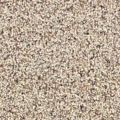 Martha Stewart Living Fontainebleau - Color Hickory 12 ft. Carpet-868HDMS202 at The Home Depot