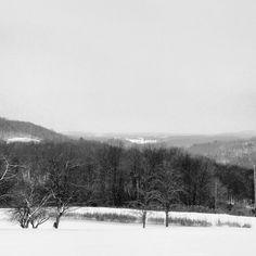 Winter Quiet, Susquehanna County, PA