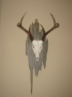 Since Paul is doing a European mount for his deer head, I thought this would be a cool background since i do not have a choice about it being hung up on the wall in our house or not.