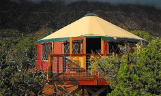 Tropical yurt (© Yurts of Hawaii)