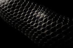black snake skin
