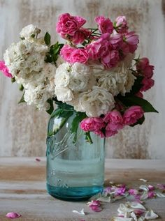pretty pink and white blooms