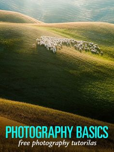 Photography Basics – Free Photography Tutorials for Beginners