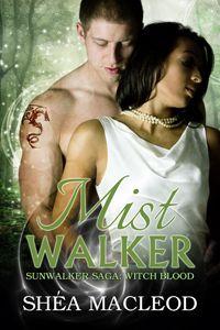 paranormal romance | urban fantasy | romance novel | witches | magic | shifter romance | dragons | Sunwalker Saga | writing