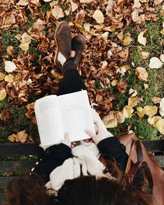 Currently reading A Severed Head by Iris Murdoch. I have only read one other book by her and am hooked by her mysterious tales, a… Hello Autumn, Autumn Day, Autumn Leaves, Autumn Aesthetic, Book Aesthetic, Autumn Photography, How To Pose, Fall Photos, Autumn Inspiration