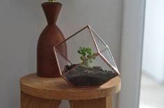 Earth Terrarium Kit, small cube glass planter in copper or silver color -- stained glass -- terrarium supplies -- eco friendly. $45.00, via Etsy.