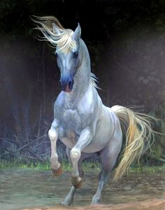 """Artist: Marcos Damascena """"Jesus' White Horse in the book of Revelation"""" All The Pretty Horses, Beautiful Horses, Animals Beautiful, Painted Horses, Hyper Realistic Paintings, Majestic Horse, Horse Drawings, White Horses, Equine Art"""