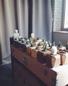 Доброе утро! Мы в @fedorivhub и тут круто. Приходите. #goosucc #гусаквыходногодня #кактусывцентренедорого #cactusworld #gagaga #cacti…