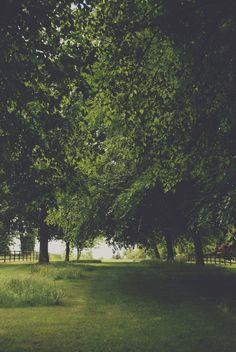south-england:  Green walkway »» Thomas Hanks