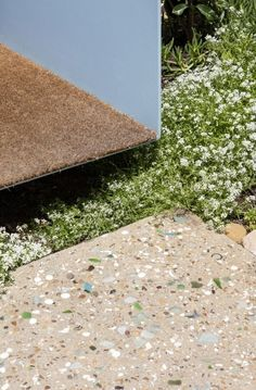 Detail between landscape step and front entry at the Sorrento Beach House