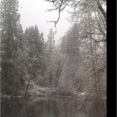 Winter in Maple Valley, WA