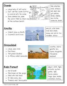 Animal Habitats by Kendra Guidos Science Lessons, Teaching Science, Life Science, Preschool Science, Science Ideas, Science Activities, Teaching Habitats, Grassland Habitat, Grassland Biome