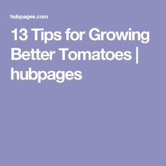 13 Tips for Growing Better Tomatoes | hubpages