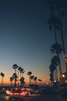 cali palm trees and a sunset - beautiful world ✧ - Wallpaper Wallpaper Travel, Nature Iphone Wallpaper, Sunset Wallpaper, Wallpaper Backgrounds, Wallpaper Ideas, Wallpaper Desktop, Iphone Wallpaper California, Iphone Backgrounds Tumblr, Vintage Wallpaper