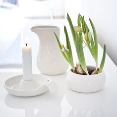 Use the sugar bowl as a flowerpot. Use your imagination