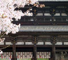 Ninnaji temple Kyoto Japan.