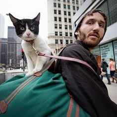 Two Cats on Michigan Avenue. I met them as I was heading south toward the Wrigley Building. Missy is a 4 month old kitten who loves to mew as she clings onto her companion's duffle bag as he walks. They graciously allowed me to snap their picture and briefly told me their story.