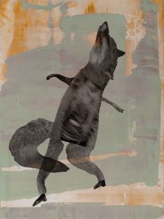Holly Roberts 2011. Fox stepping